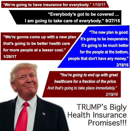 Image result for trump health care