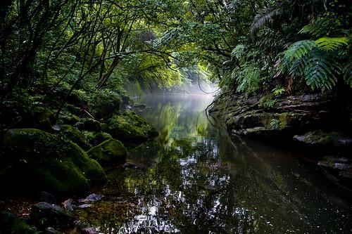 Dsc 6578 stephen yang flickr for Jungle furniture white river