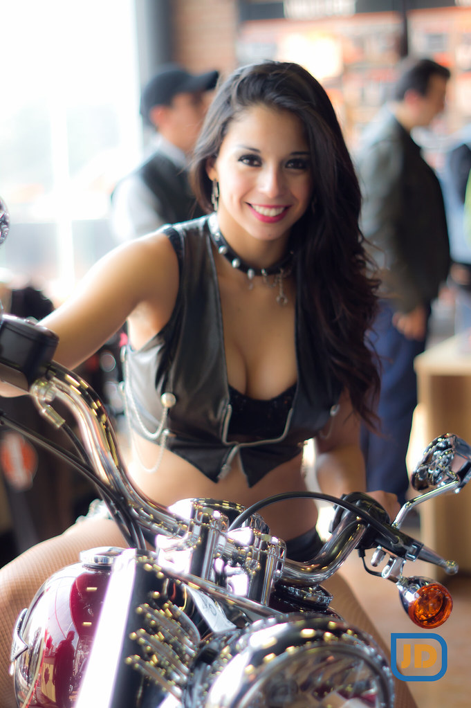 New Harley Models
