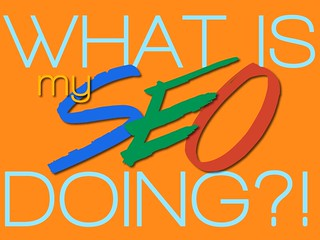 What Is My SEO Doing | by NoveltyCREW