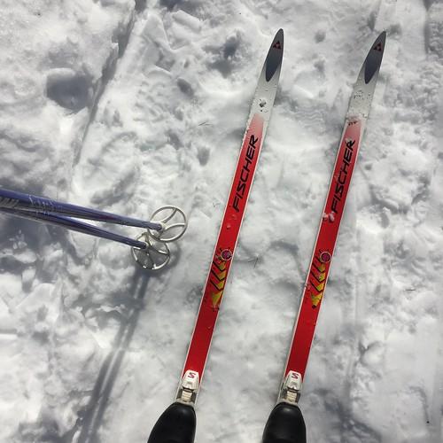 Skiing in Ottawa