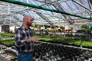 Greenhouse and Garden Van & Walking Tour at Churchill Downs | by Kentucky Derby Museum