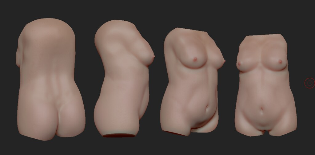 Female Torso Anatomy Study | Zbrush | Justin Younger | Flickr