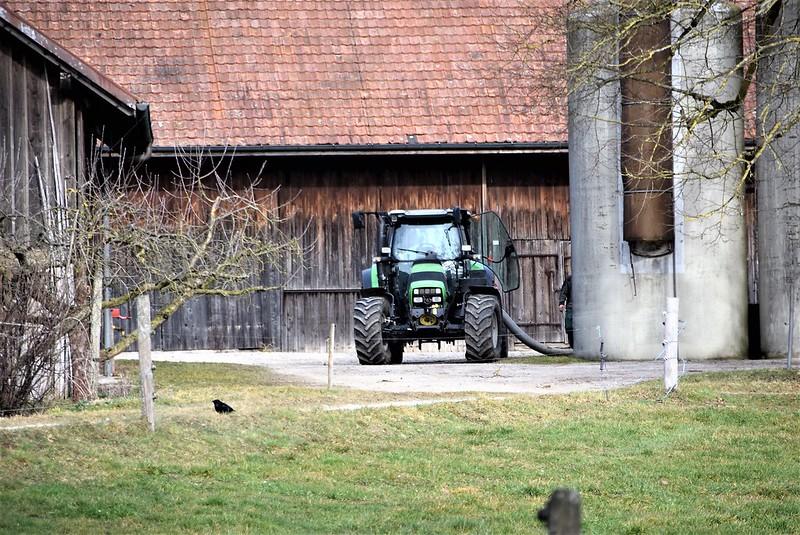 Feldbrunnen village 23.02 (2)