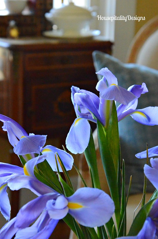 Irises-Housepitality Designs