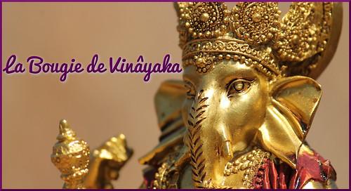 La Bougie de Vinayaka, Blog culturel