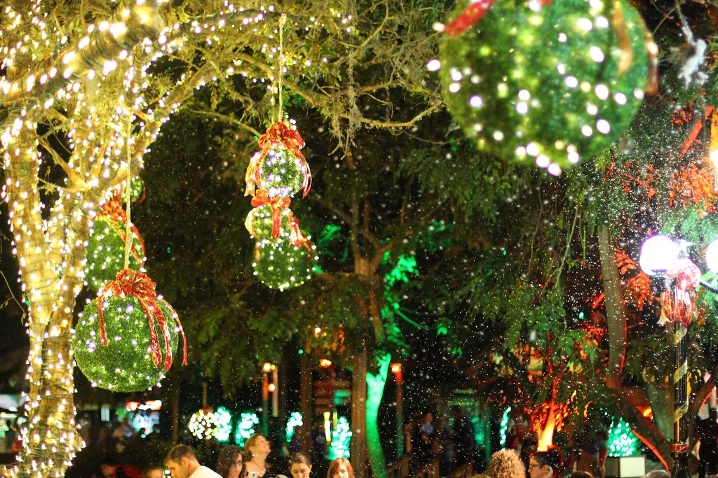 Christmas Town 2013 at Busch Gardens Tampa | Inside the Magic | Flickr