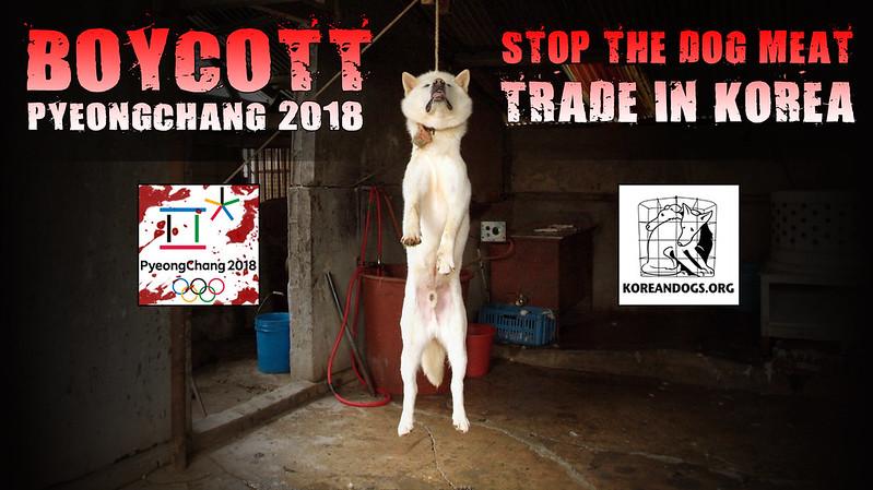 Boycott PyeongChang 2018