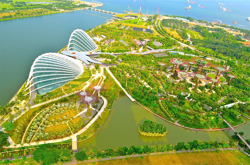 Garden By the Bay by Sarah Ackerman