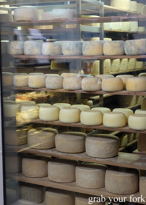 Cheese maturing room at Bruny Island Cheese Co on Bruny Island in Tasmania