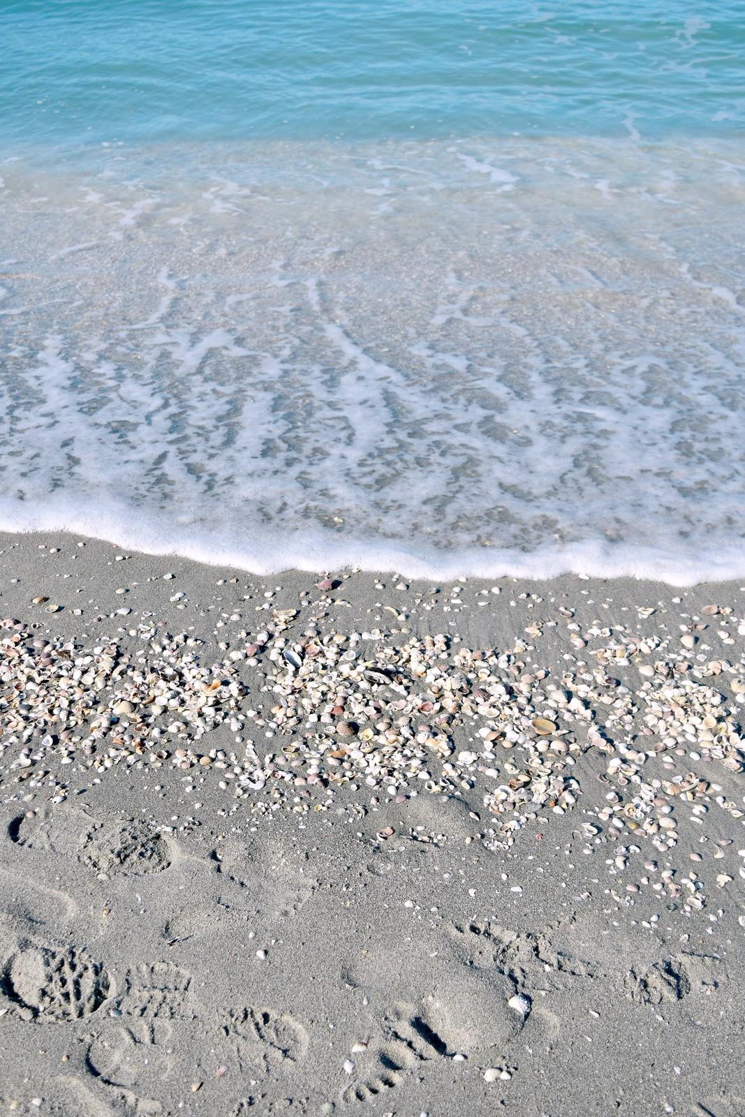 Captiva Island beach footprints seashells