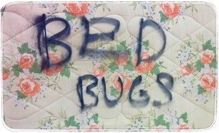 Bed Bug Bed | by Orin Zebest