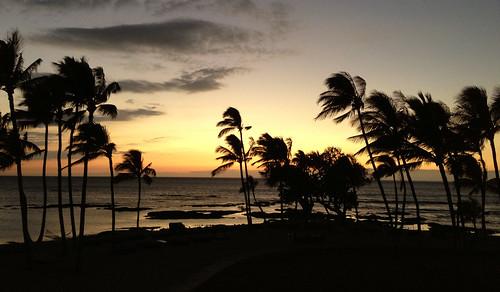 Mauna Lani Room Service Menu