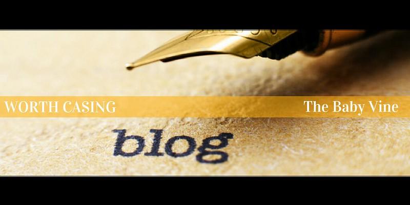 The Baby Vine | Blogging | Agent Mystery Case | Blog Spotlight