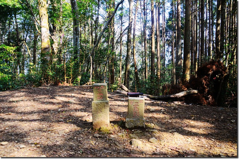 高台山三等三角點(#6286)及山字森林三角點 1