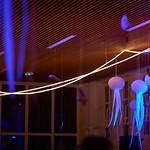 YNHM 2017 : Closing Gala
