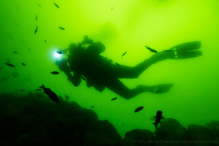 Diver Silhouette | by Mike Cialowicz