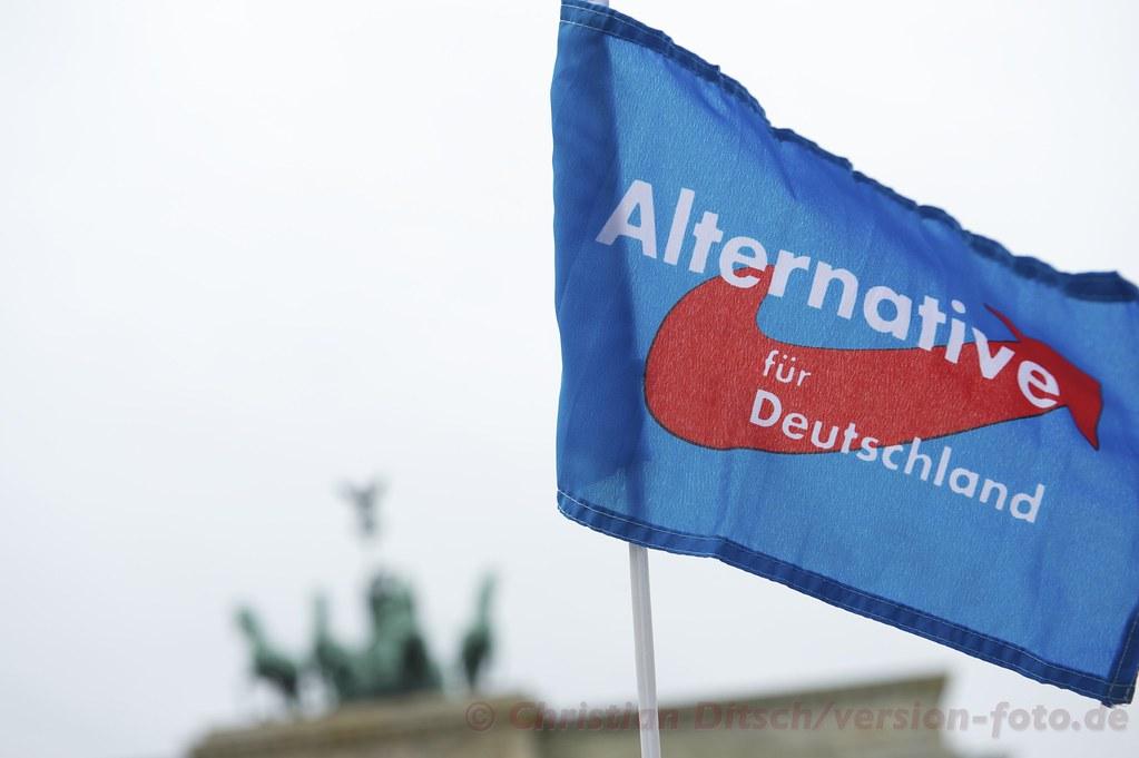 Alternativa por Alemania: los hijos del nacionalismo alemán