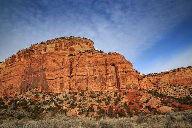 Ute Canyon Sandstone
