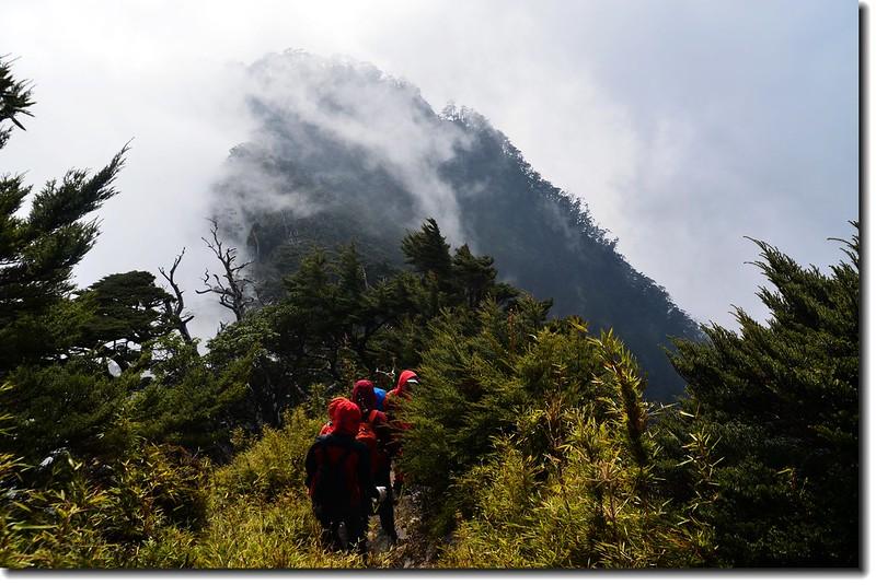 北大武山登山步道 11