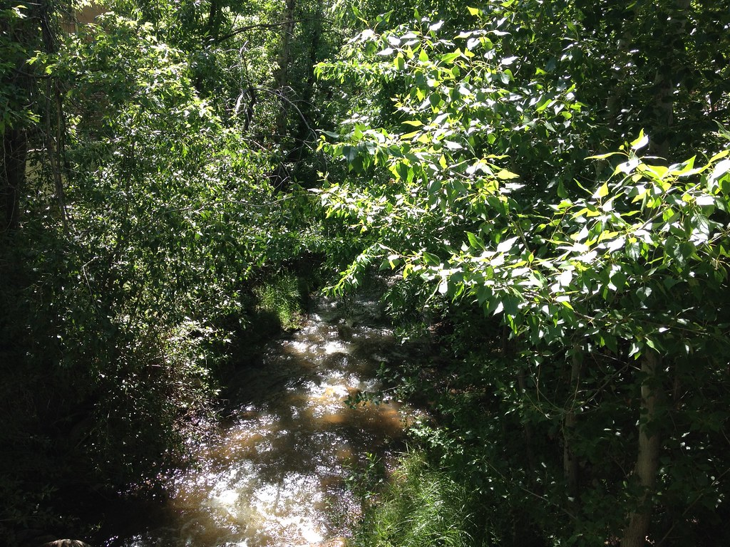 High Quality ... Santa Fe Watershed, Feeder To The Rio Grande   By HokieDawg