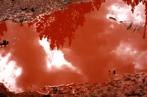 blood clay puddle painted i found this clay