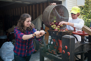 Tara Milling Apples for Cider | by goingslowly