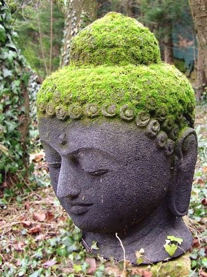 Weathered Buddha head covered in moss