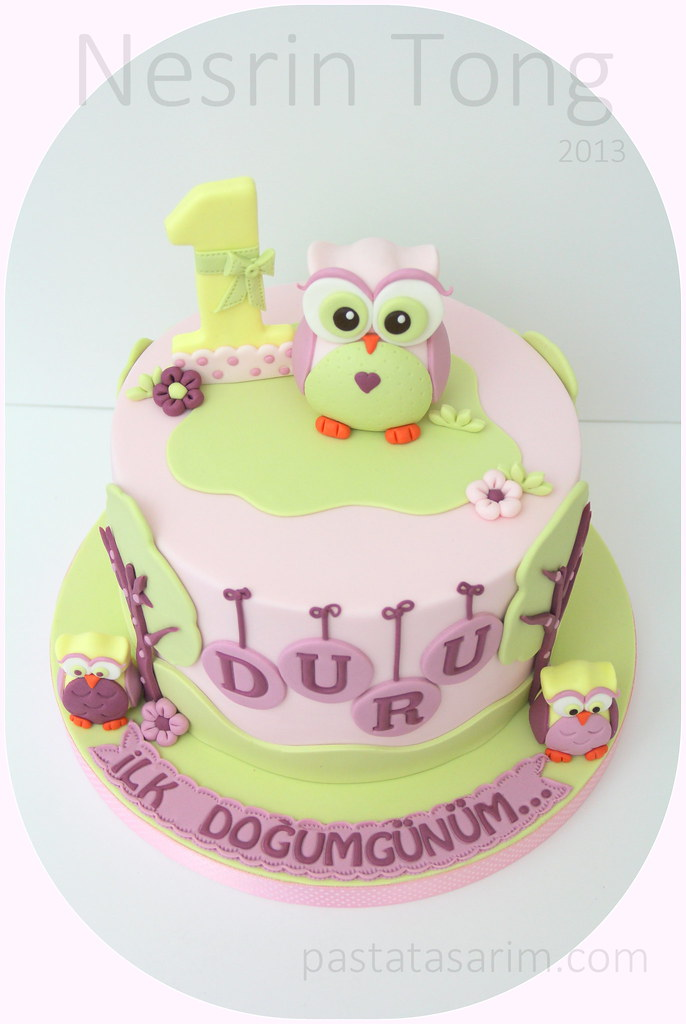 Owl First Birthday Cake Cake By Nesrn Tong Flickr