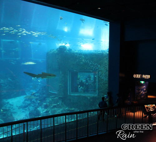 160908d Maritime Museum and SEA Aquarium _278