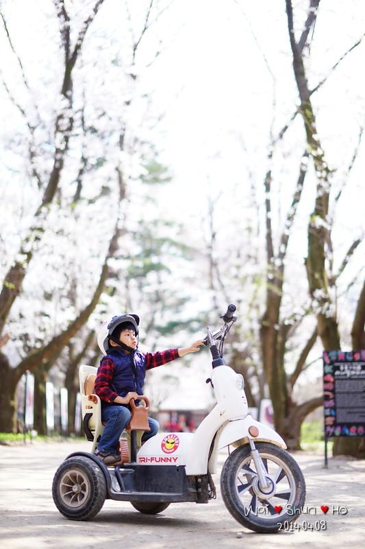 Sakura bike