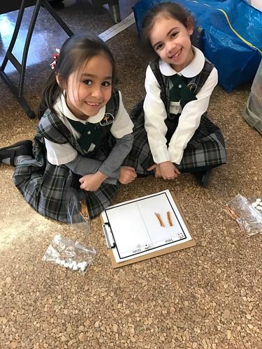 Mrs. Cordaro's First Grade Classroom 2016-17