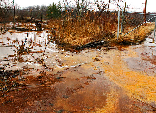 Ohio Valley Mushroom Farm, Acid-Mine Drainage (AMD) | by Jack W. Pearce
