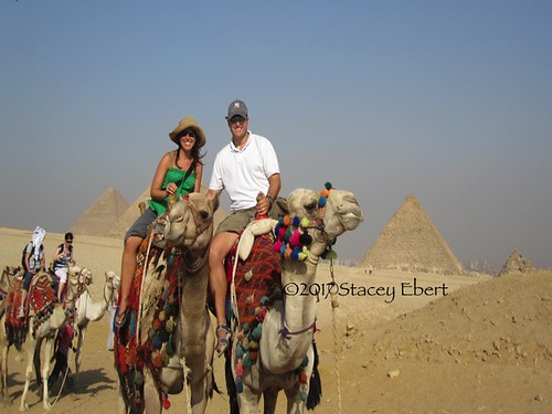Camel rides at the Pyramids of Giza. From But I Never Realized I Was Learning Anything