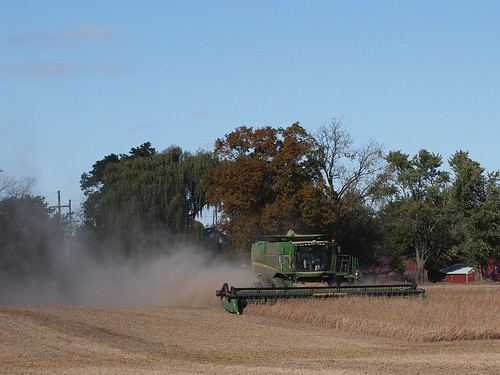 Soybean Harvest Day, Clinton, Michigan | by F. D. Richards