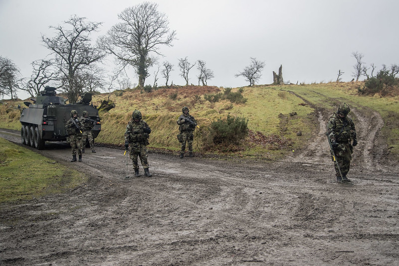 Armée Irlandaise/Irish Armed Forces - Page 2 32463704054_7cf4b99b72_c