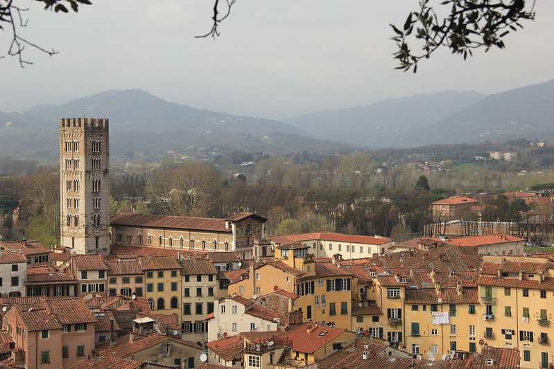 View from Torre Guinigi, Lucca