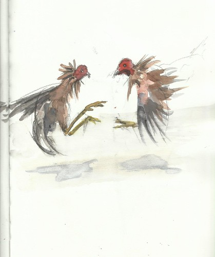 Cockfight | by Félix Tamayo