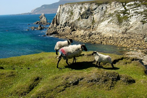 Atlantic View, Achill Island, Co. Mayo (Ireland) | by Mayo Ireland