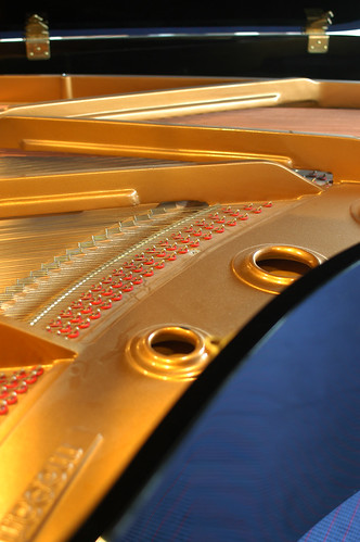 Grand piano | by Erna Braat