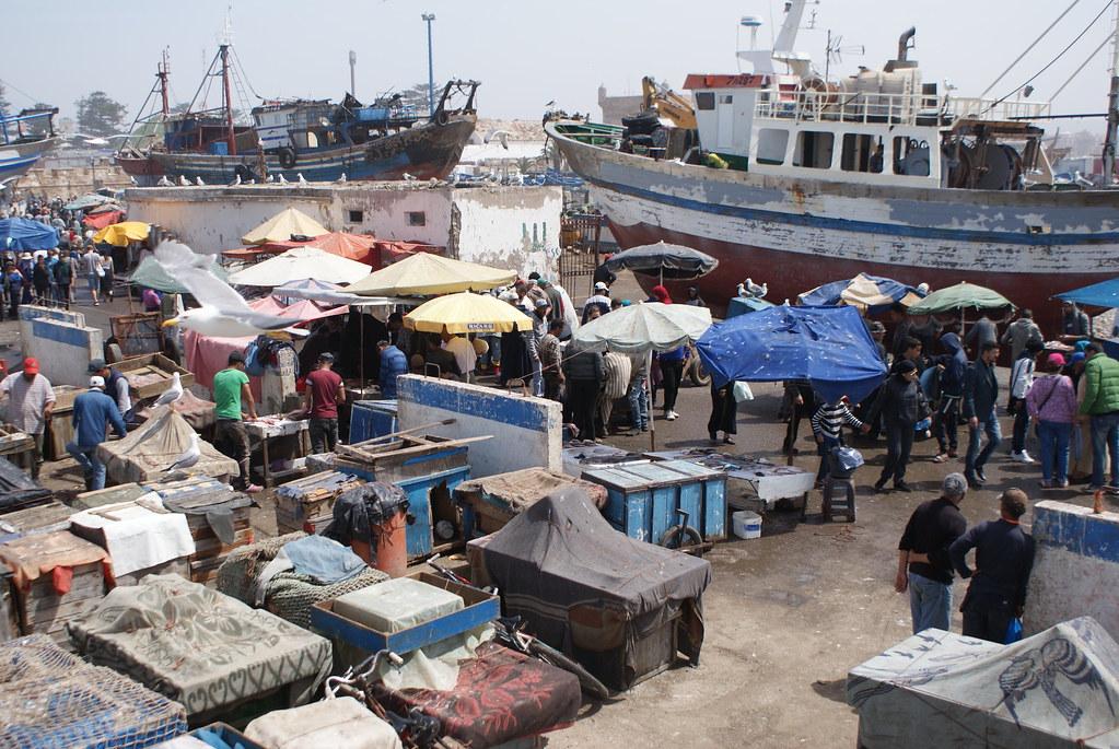 Le marché aux poissons sur le port d'Essaouira.