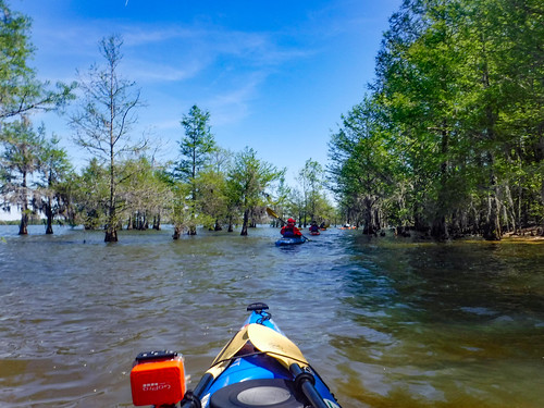 Paddle to Church Island with the Tri-County Blueways Paddlers-015