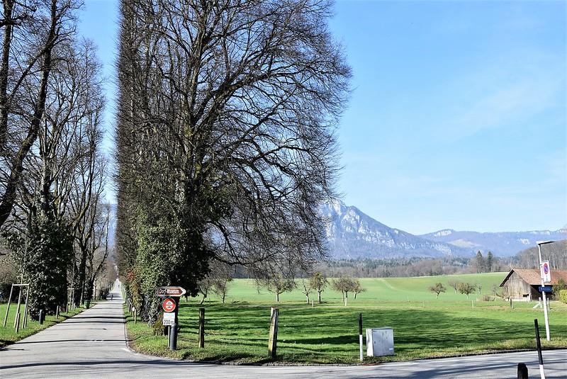 Feldbrunnen 14.03 (5)