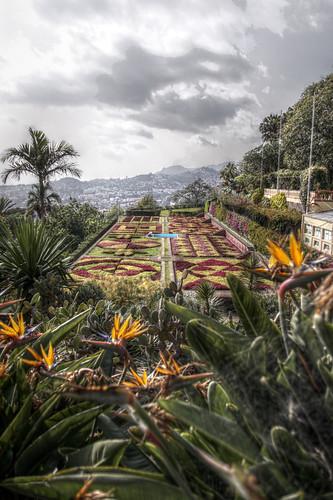 Madeira - Madeira Botanical Garden
