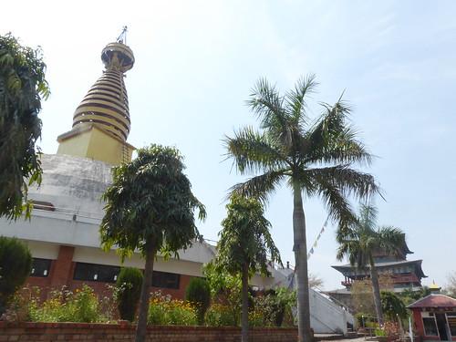 n-lumbini-ouest-Nepal (2)