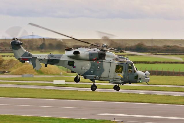 Wildcat AH.1 ZZ387