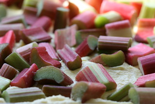 rhubarb sheet cake | by the james kitchen
