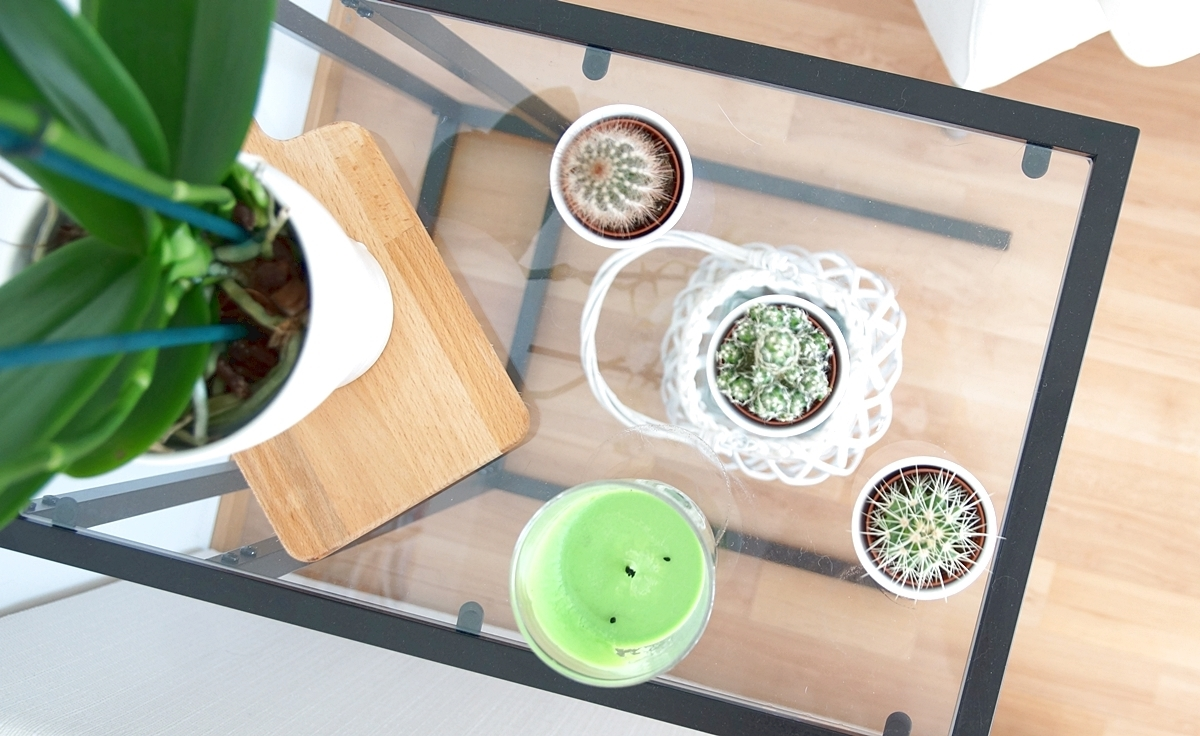olohuone_kaktukset