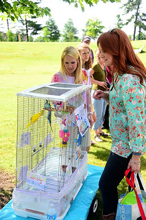 Pet Parade | by Ree Drummond / The Pioneer Woman