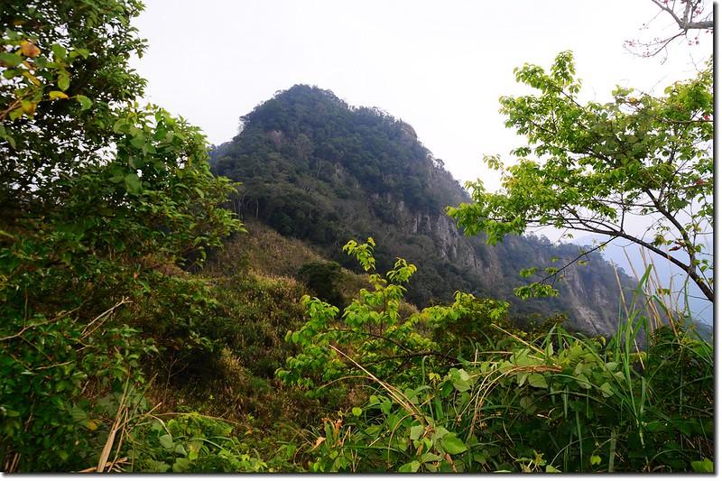 相思園望尖石山 3